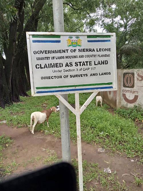 Sierra Leone Lands